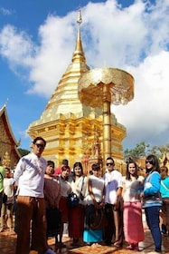 1 Day tour Temple, Zoo & Hot Springs ,Chiang Mai