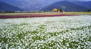 Chishang