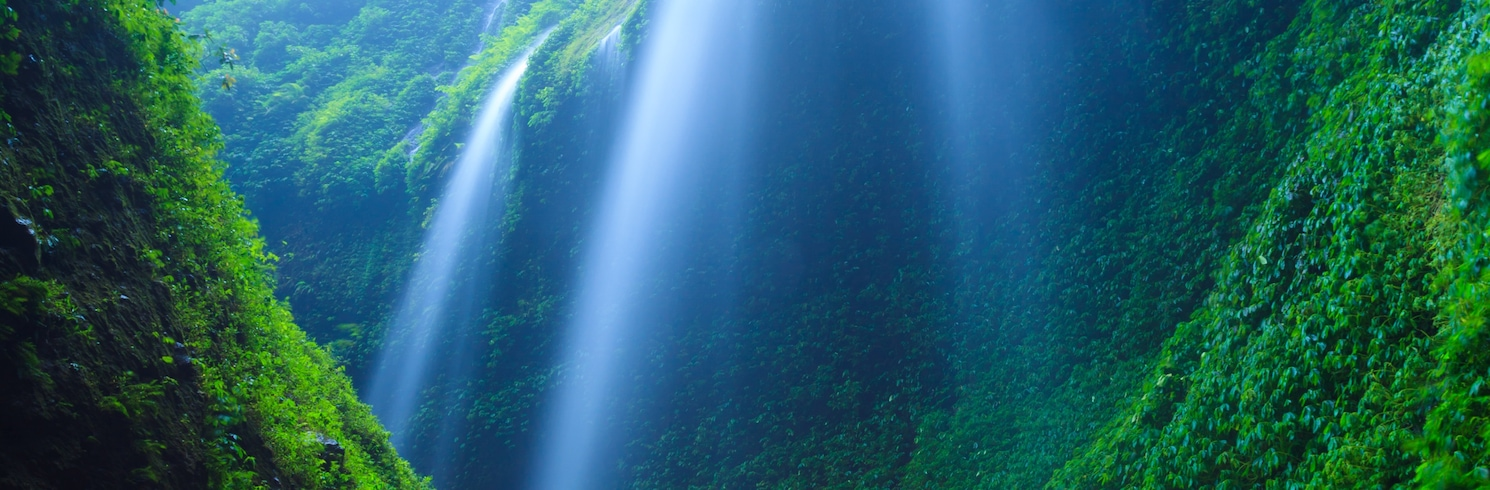 Ngadisari, Endonezya