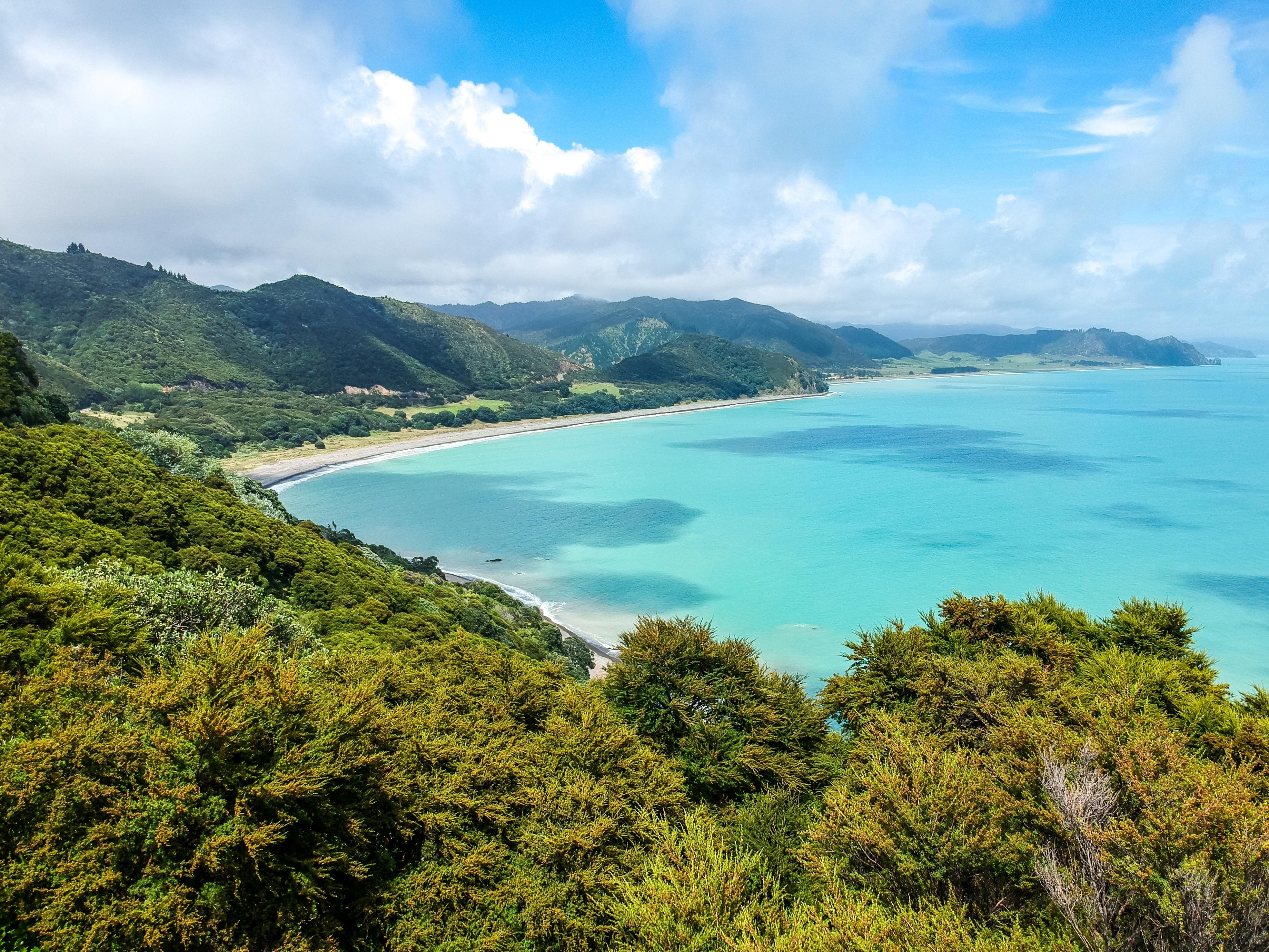 District Opotiki, Bay of Plenty Region, Nieuw-Zeeland