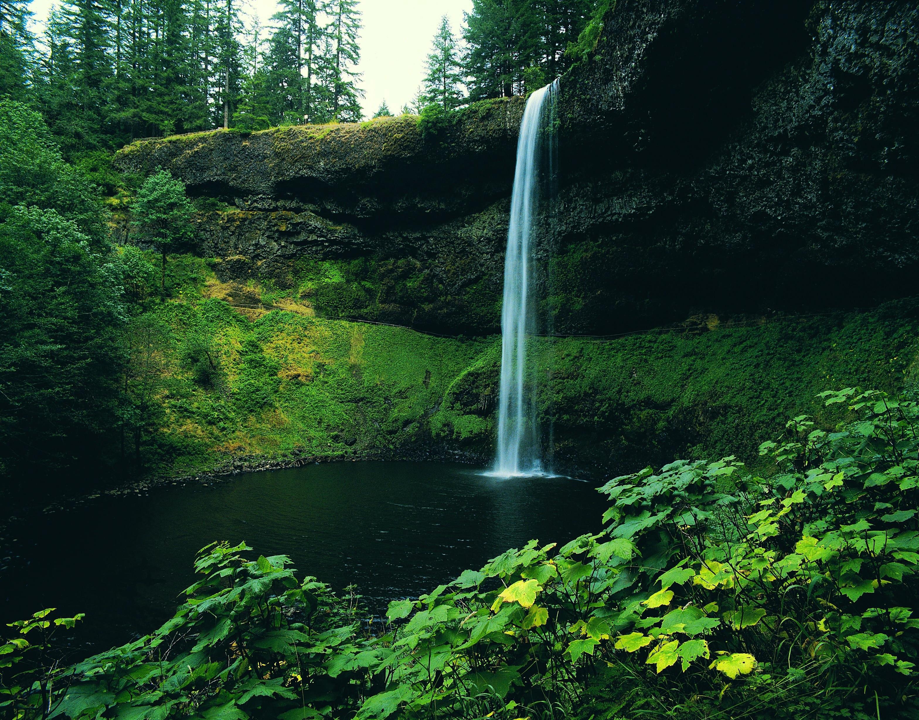 Packwood, Washington, United States of America