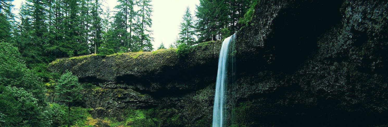 Packwood, Washington, Spojené štáty