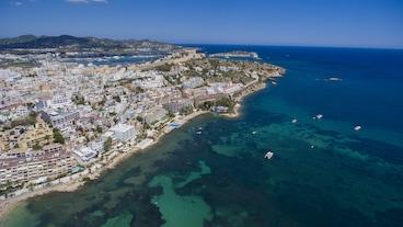 Ibizan
