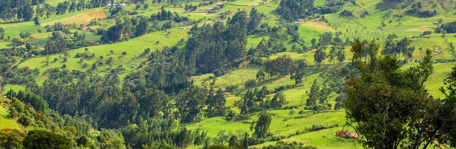 昆迪纳马卡, 哥伦比亚