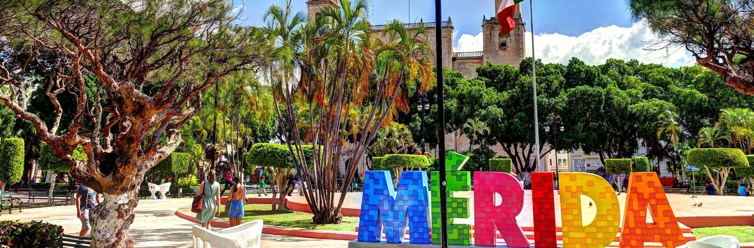 מרידה, מקסיקו