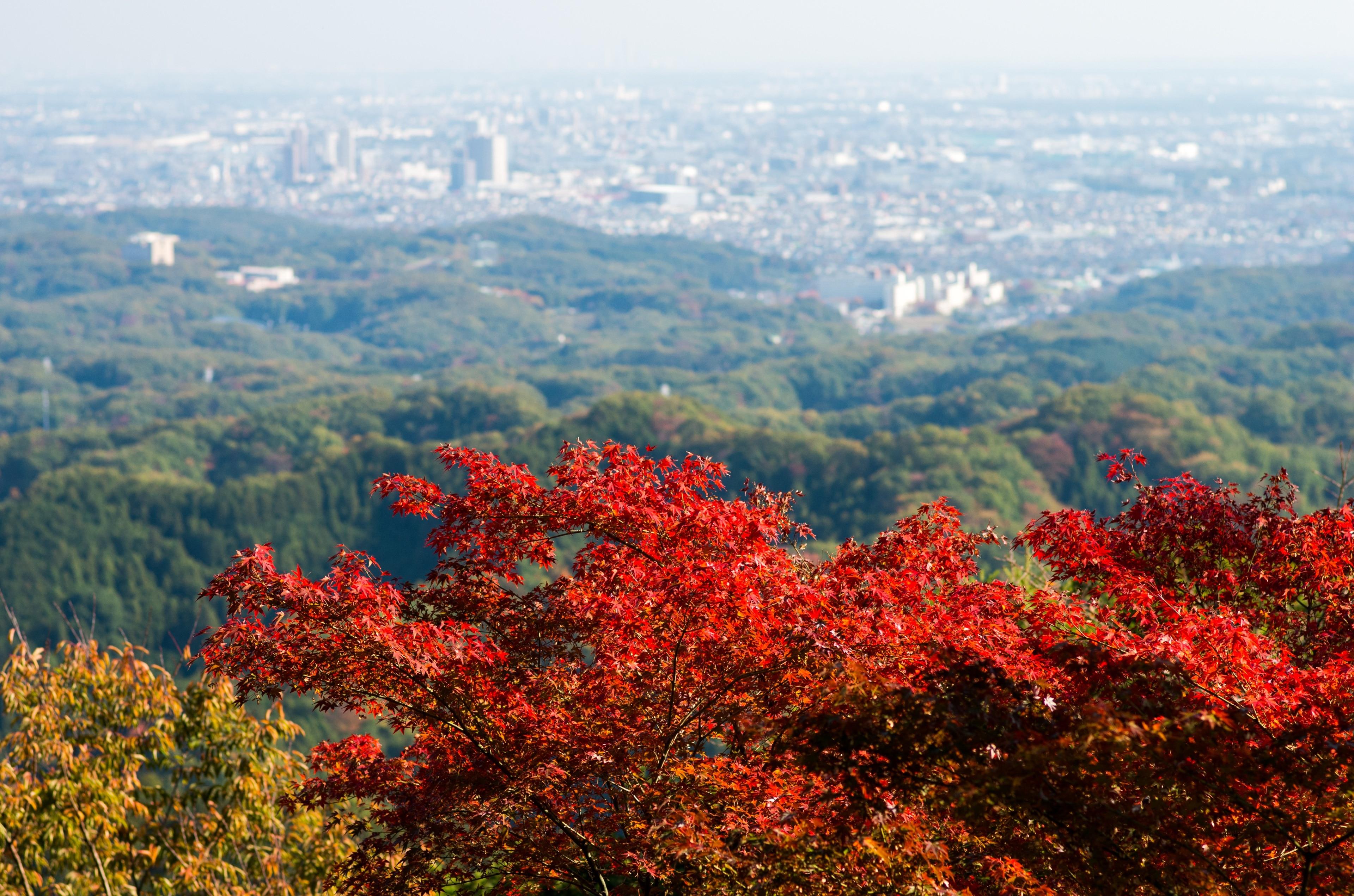 Hachioji, Tokyo (prefectuur), Japan