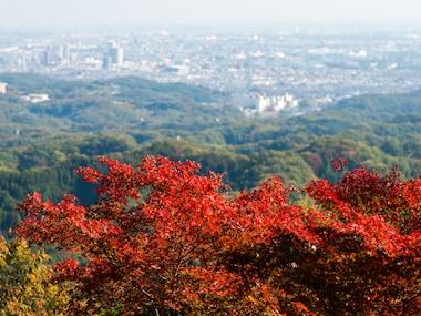 Mount Takao