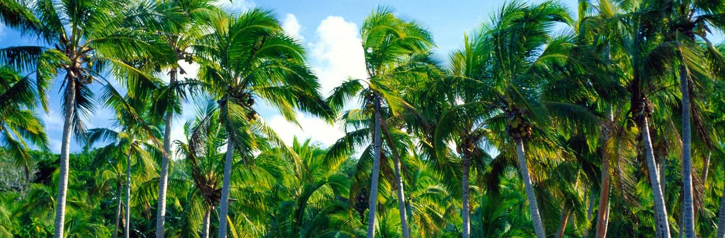 利夫, 新喀里多尼亞