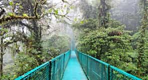 Biosphärenreservat Nebelwald Monteverde