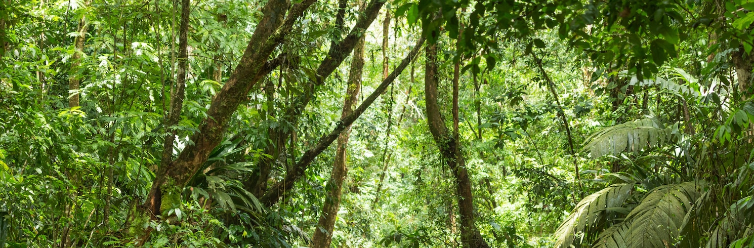 Лімон, Коста-Ріка
