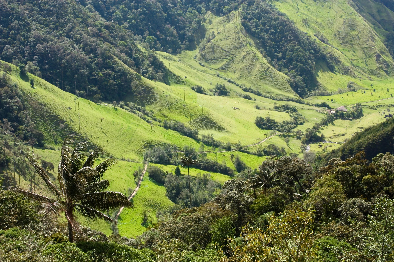 Quindio, Colombia