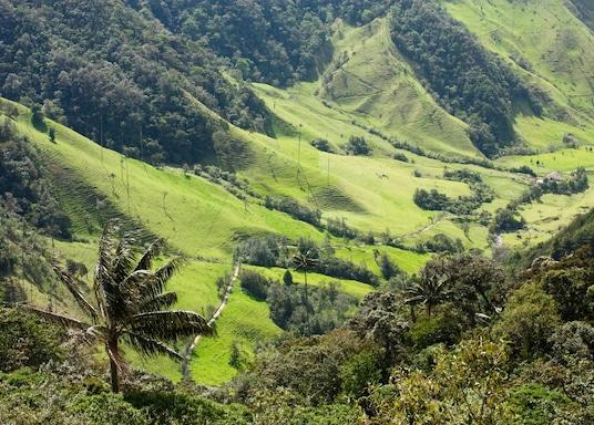 Quindio, Kolumbia