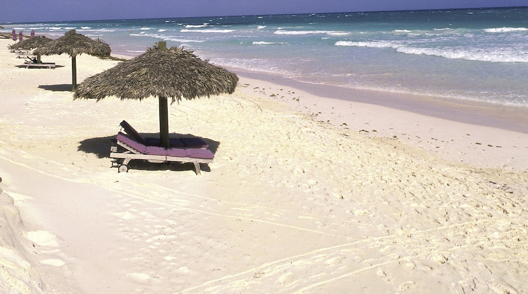 Pink Sand Beach