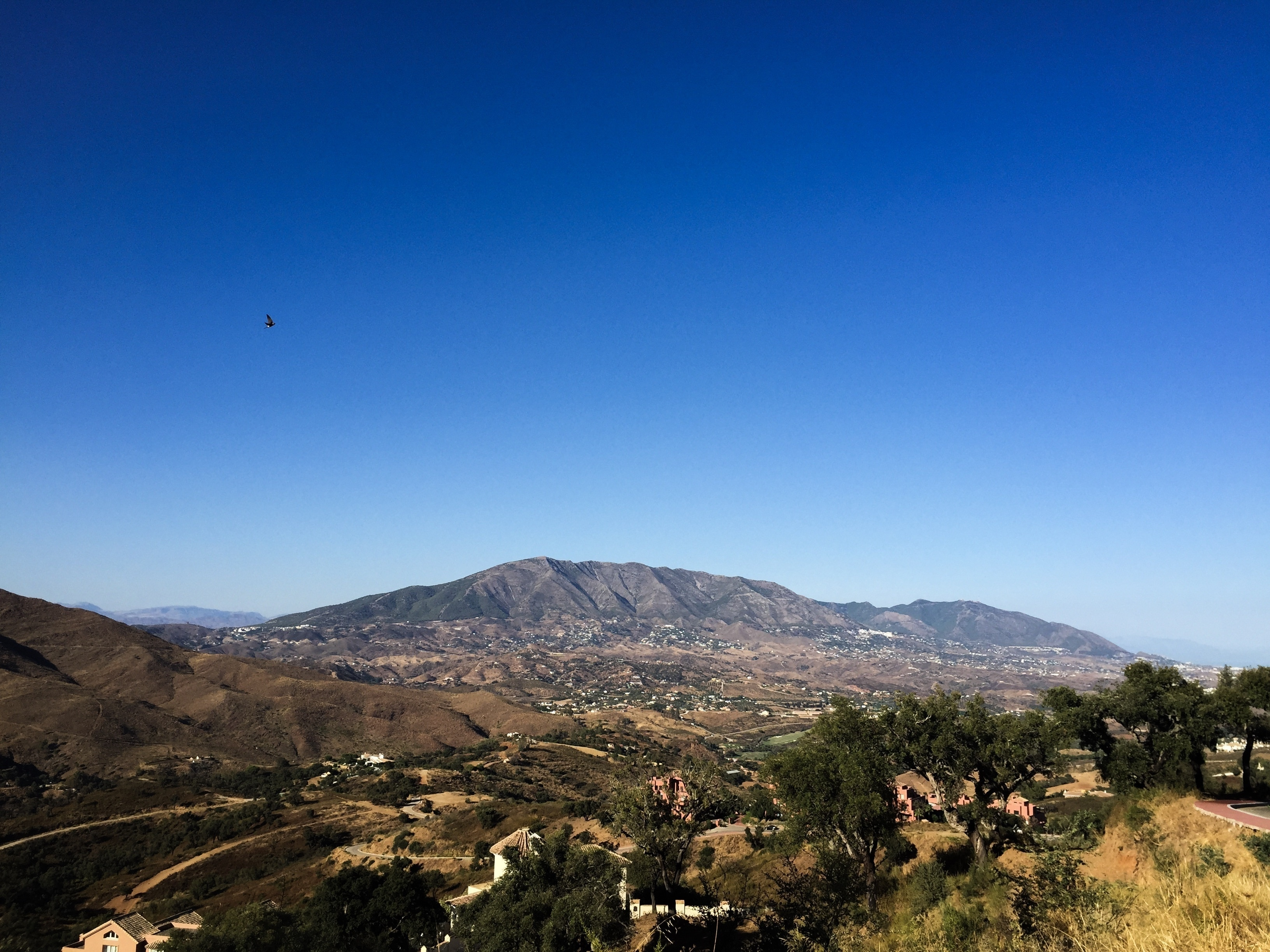 Elviria, Marbella, Andalusia, Spain