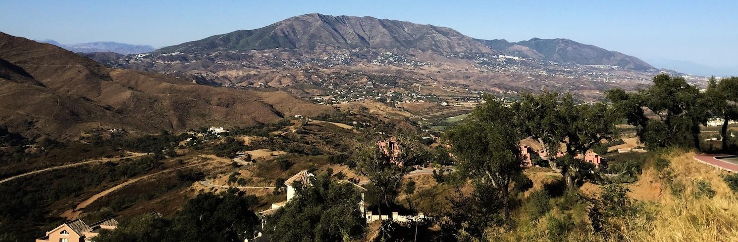 Elvirija, Ispanija