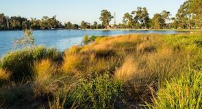 Victoria Lake Park