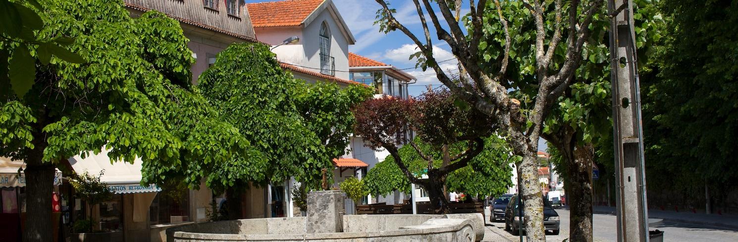 Nelas, Portekiz