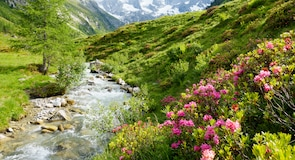 Parque Nacional de Hohe Tauern