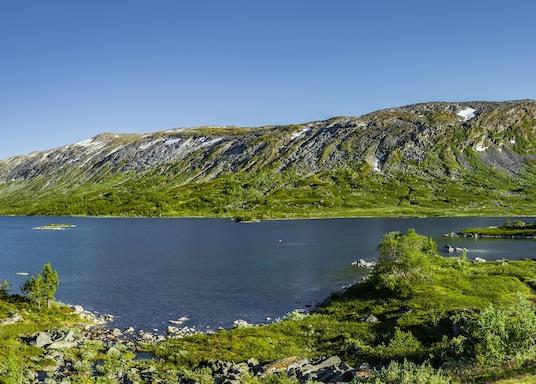 Skjaak, Noruega