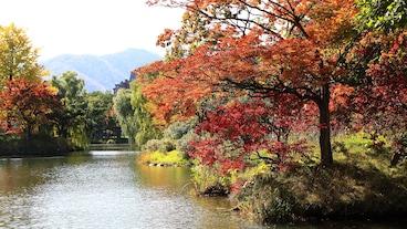 中島公園/