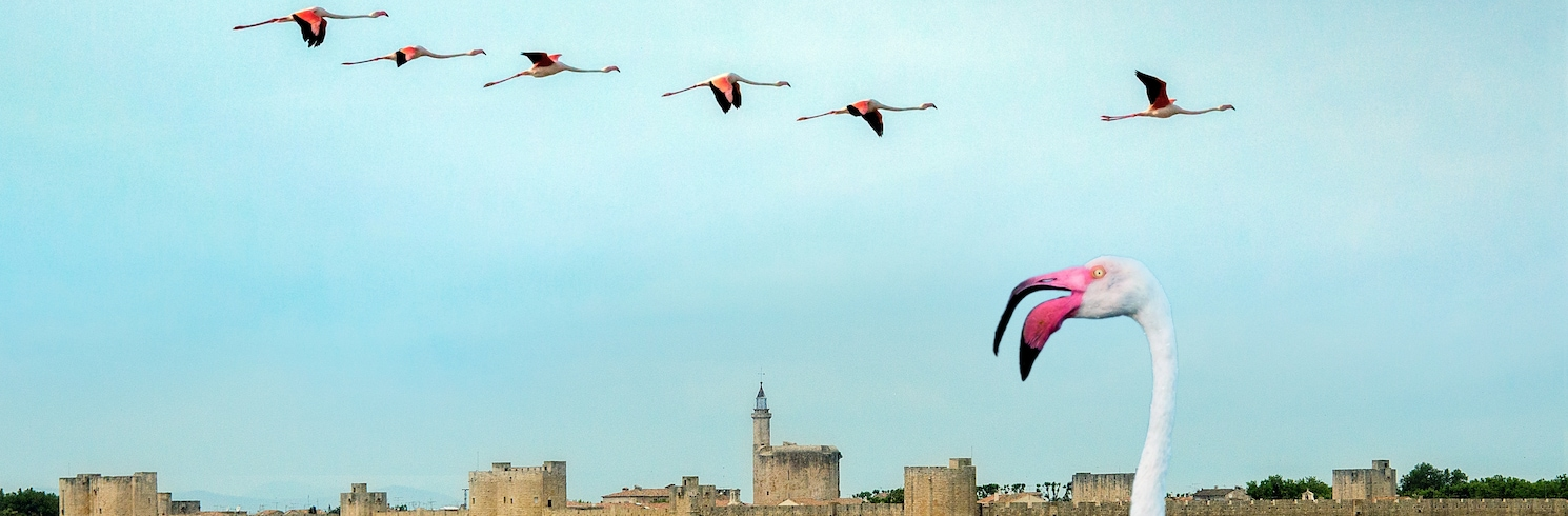 Aigues-Mortes, France