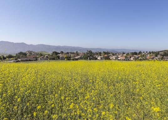 Ventura, California, USA