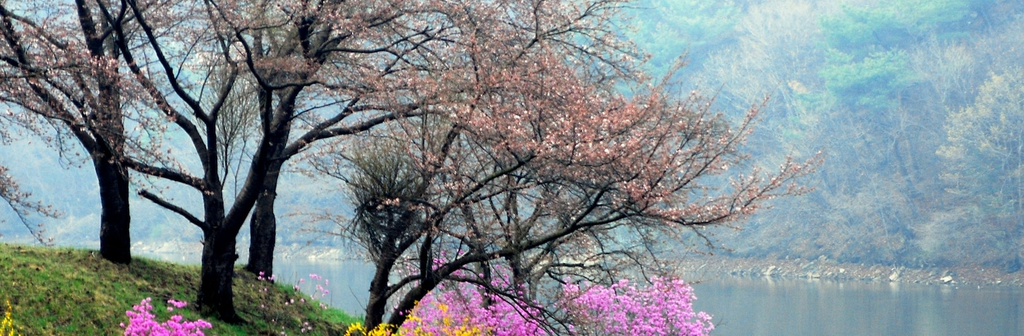 Yongin, Kórejská republika