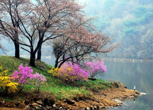Yongin, Jižní Korea