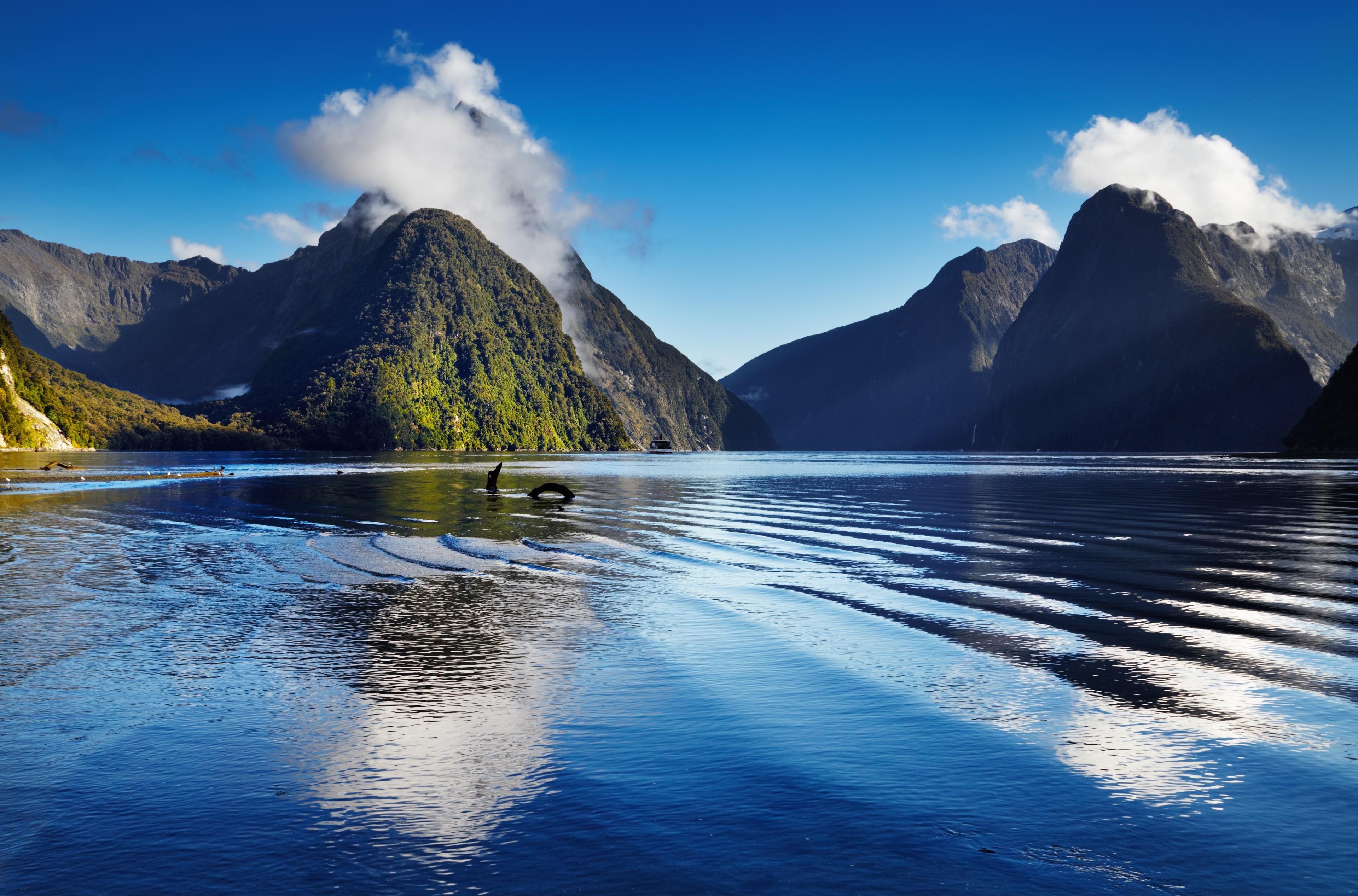 Milford, Auckland, Auckland Region, New Zealand