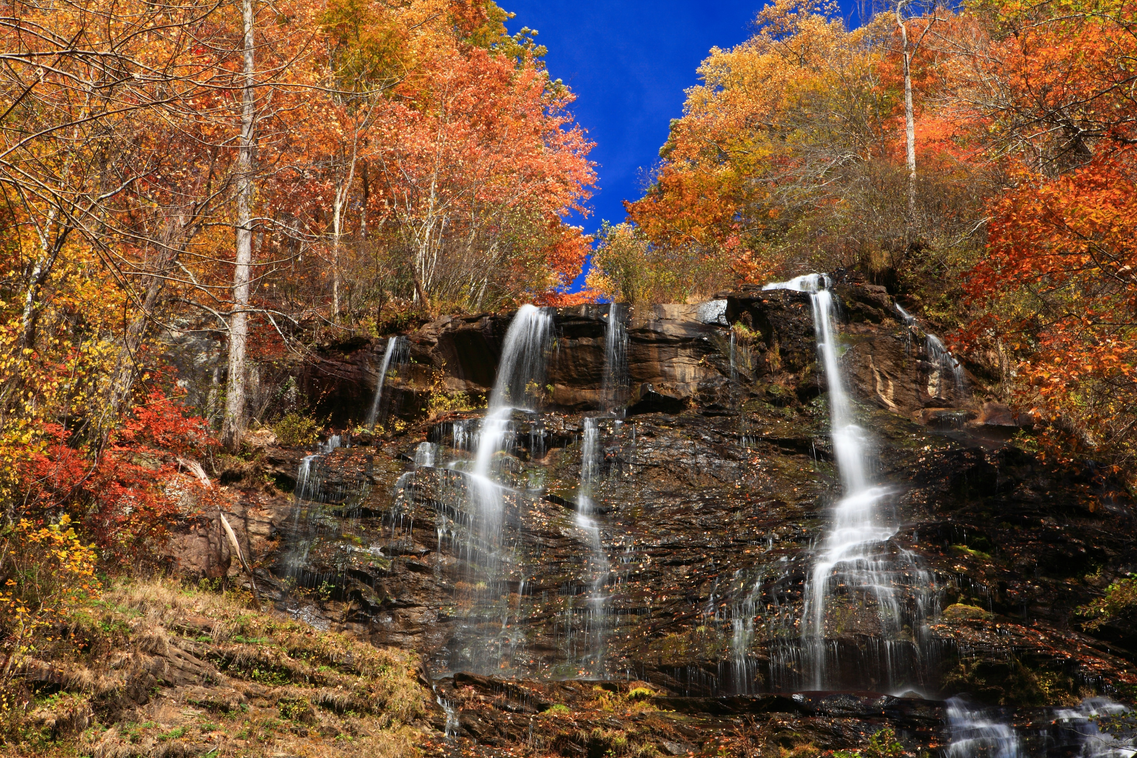 Amicalola Falls State Park, Dawsonville, Georgia, USA