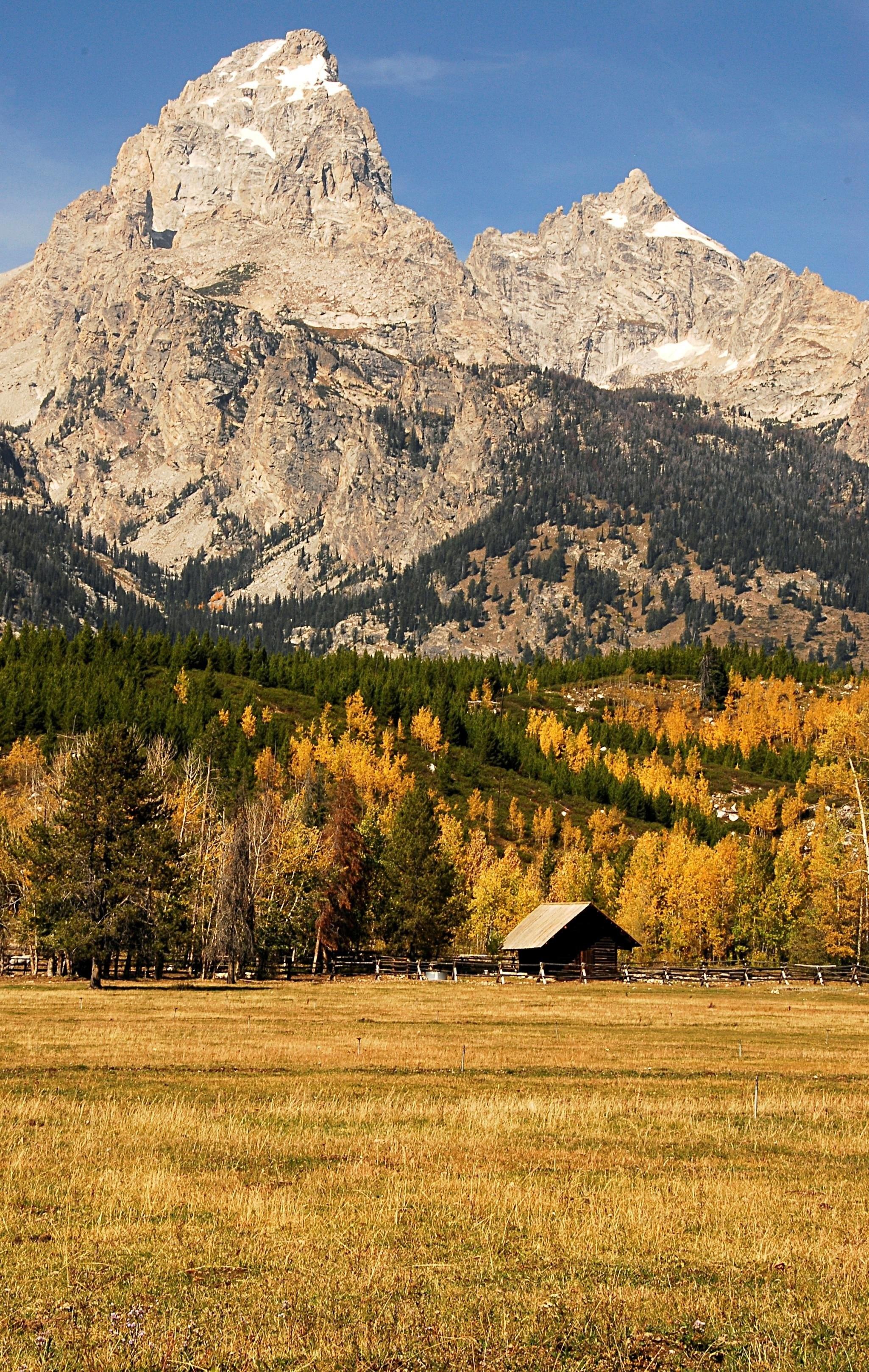 Wyoming, MI