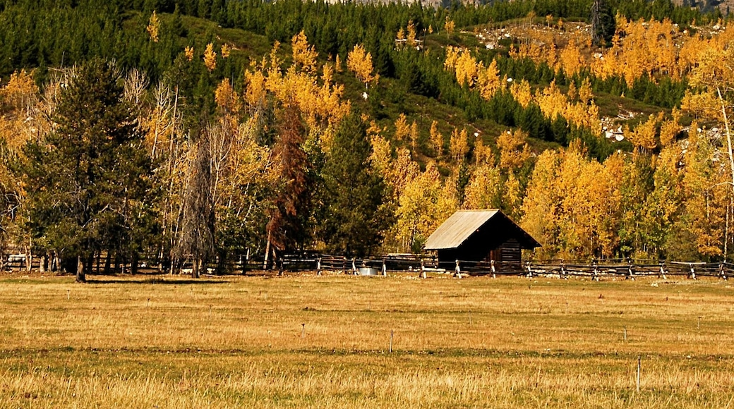 Wyoming