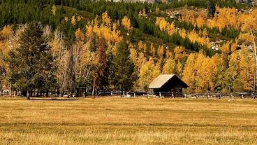 Wyoming/