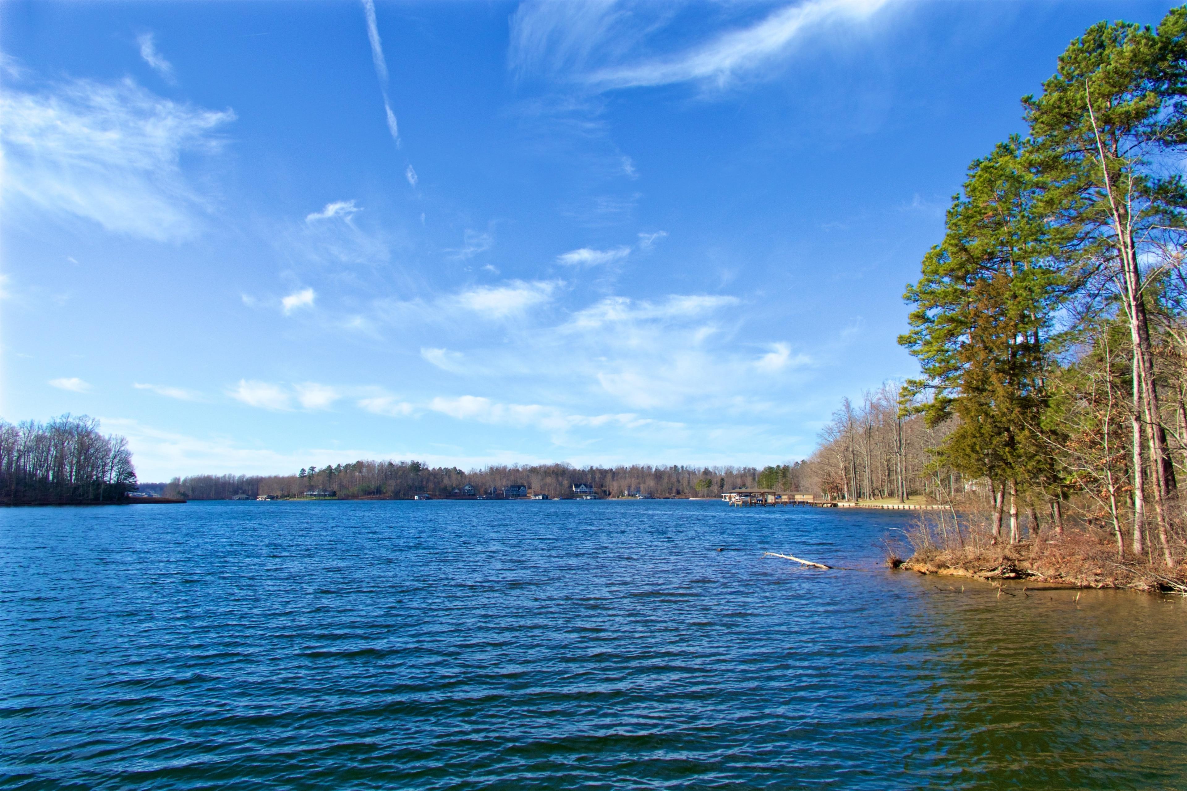 Louisa County, Virginia, Verenigde Staten