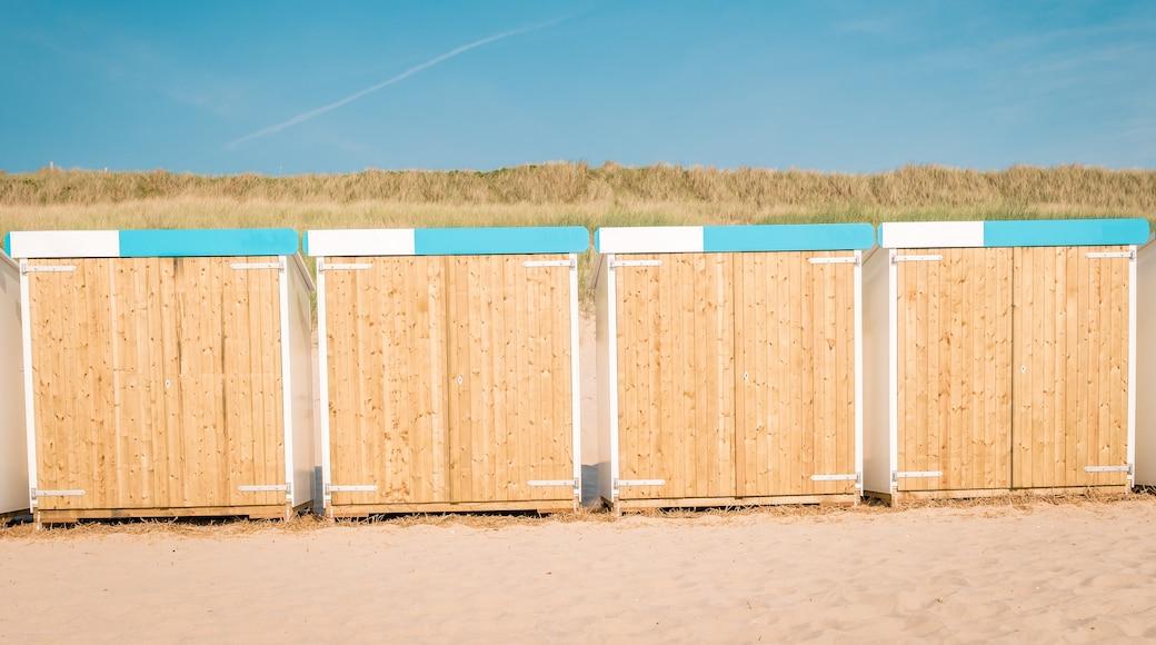 Bergen-aan-Zee Beach