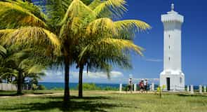 Centro de Puerto Seguro