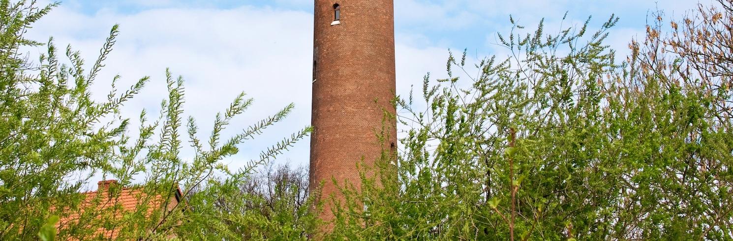 Gaski, Ba Lan