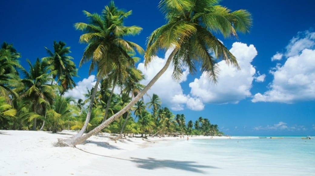 Ilha Saona