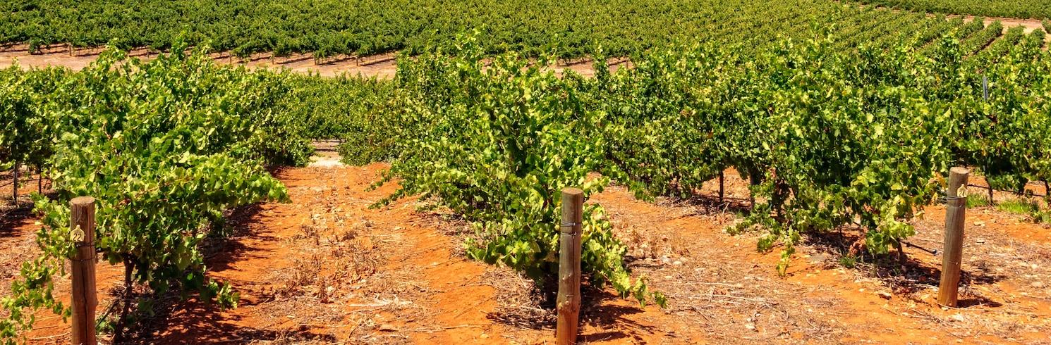 Clare, South Australia, Australia