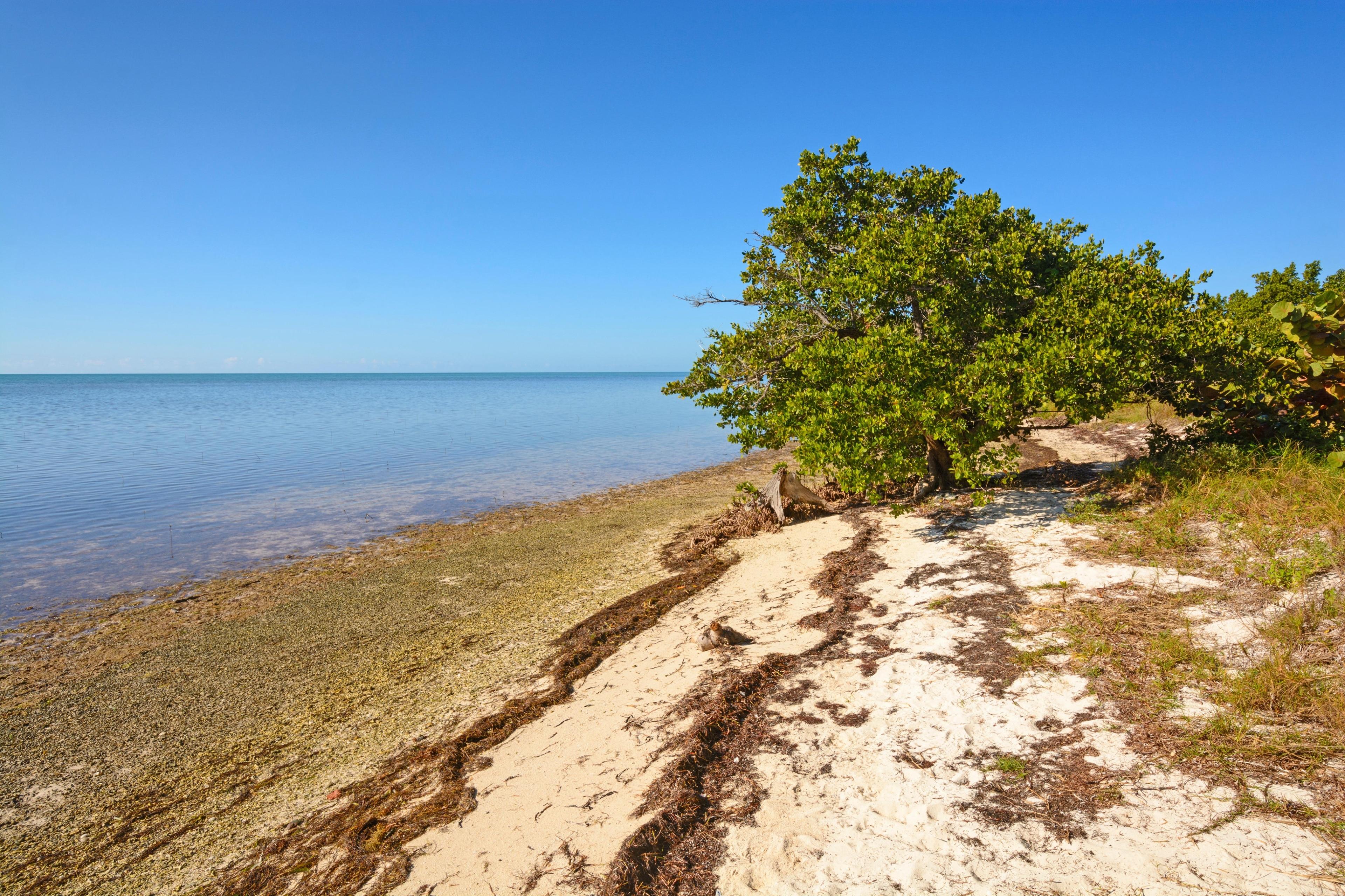 Staatspark Long Key, Florida, Verenigde Staten