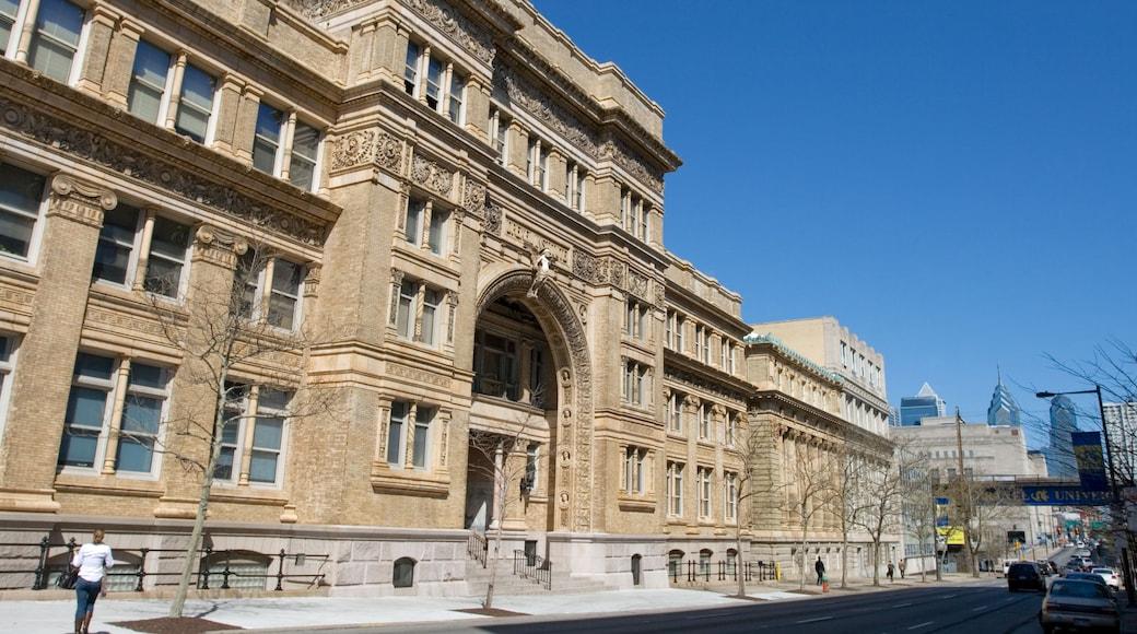 Université de Pennsylvanie