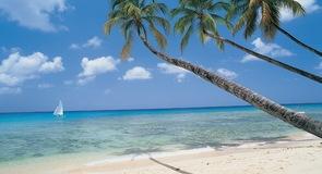 หาด Paradise