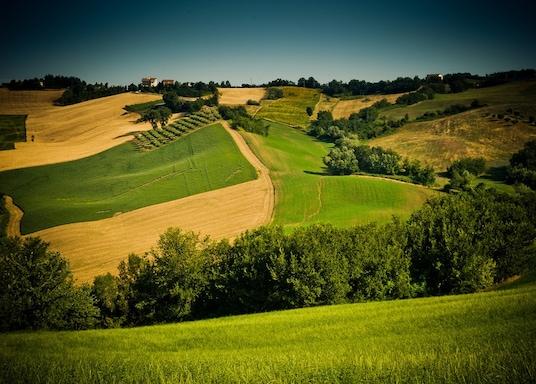 Conero Şarap Bölgesi, İtalya