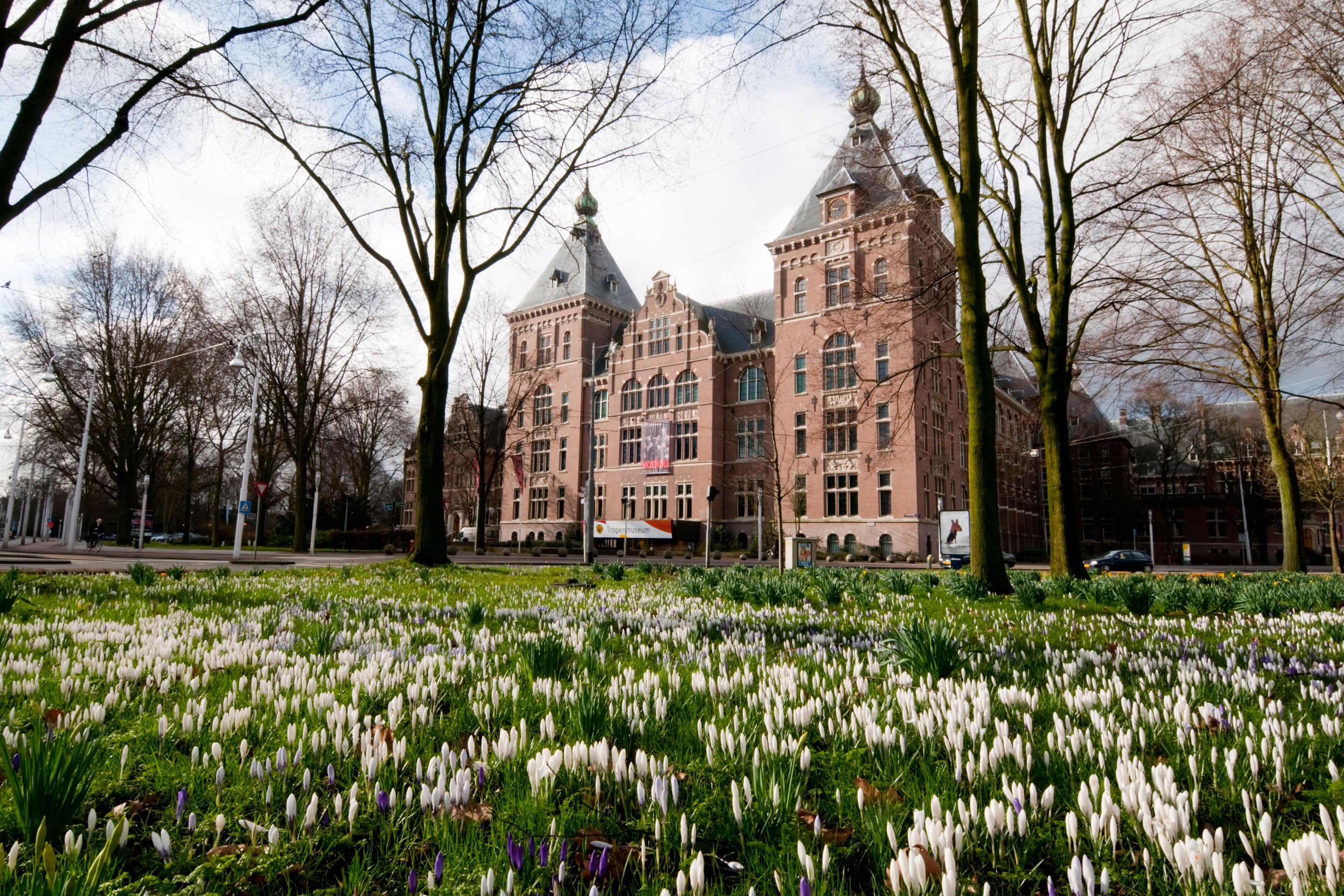 Middenmeer, Amsterdam, North Holland, Netherlands