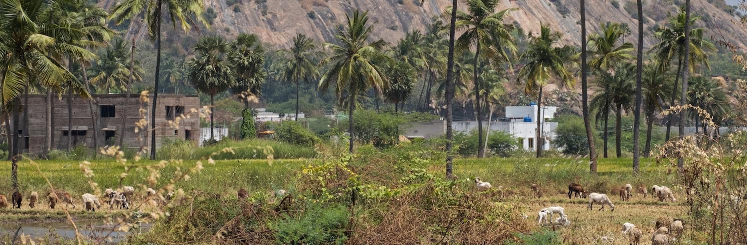 帕拉尼, 印度