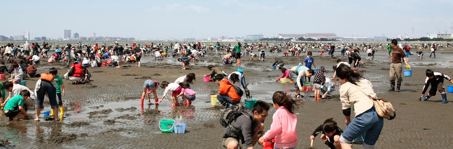 Funabashi, Japonsko