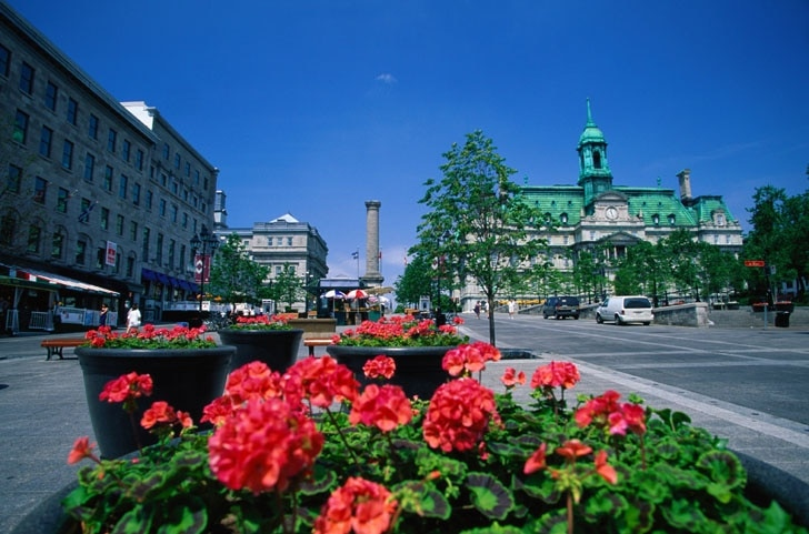 Montreal City Hall, Montreal, Quebec, Canada