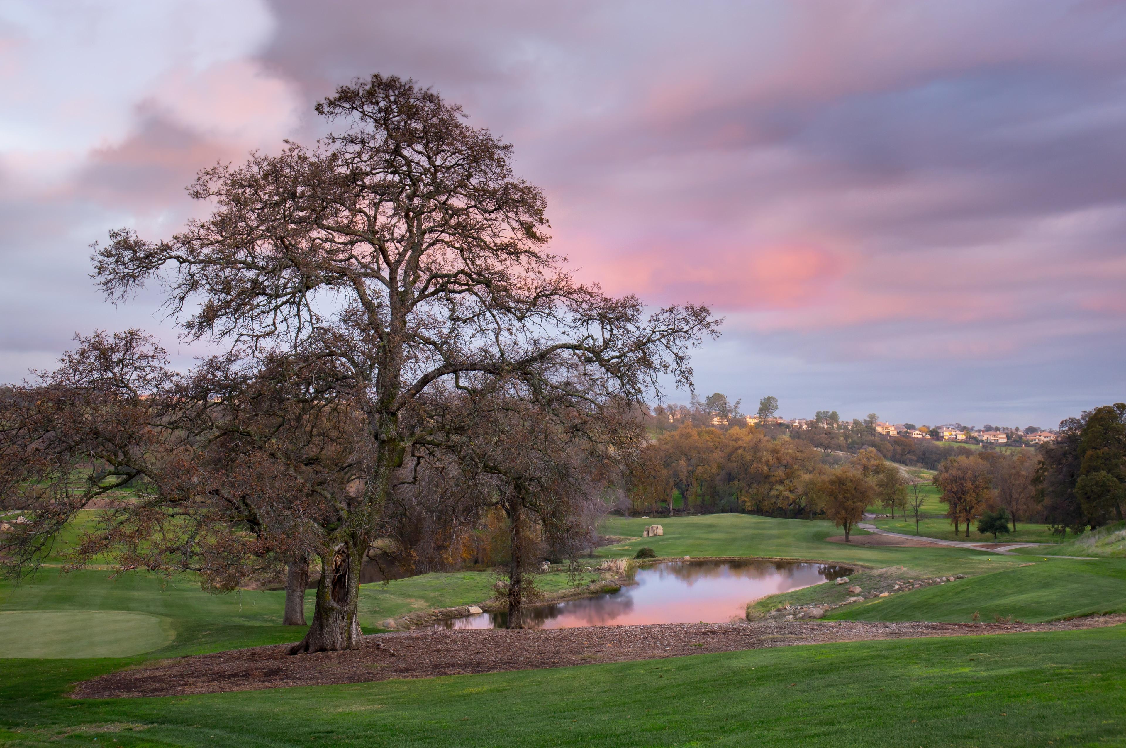Lincoln, California, United States of America