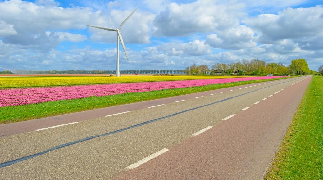 Almere