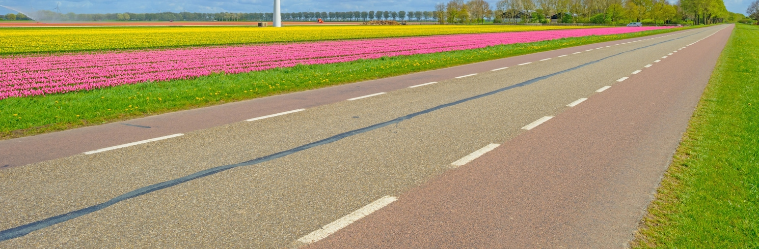 Almere Stad, Holland